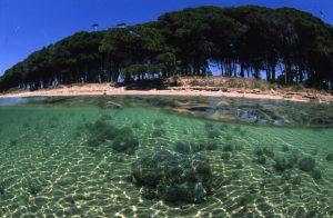 Photo Coasta de Smarald